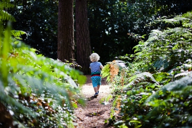 Bournemouth family photography documentary natural light boy in woods