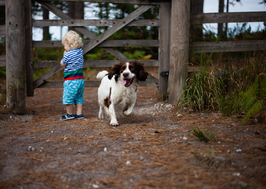 natural-family-photography-dorset-hampshire-wiltshire-36
